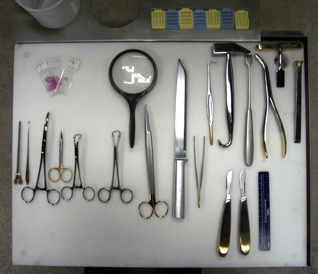 Some of the tools used to perform an autopsy.