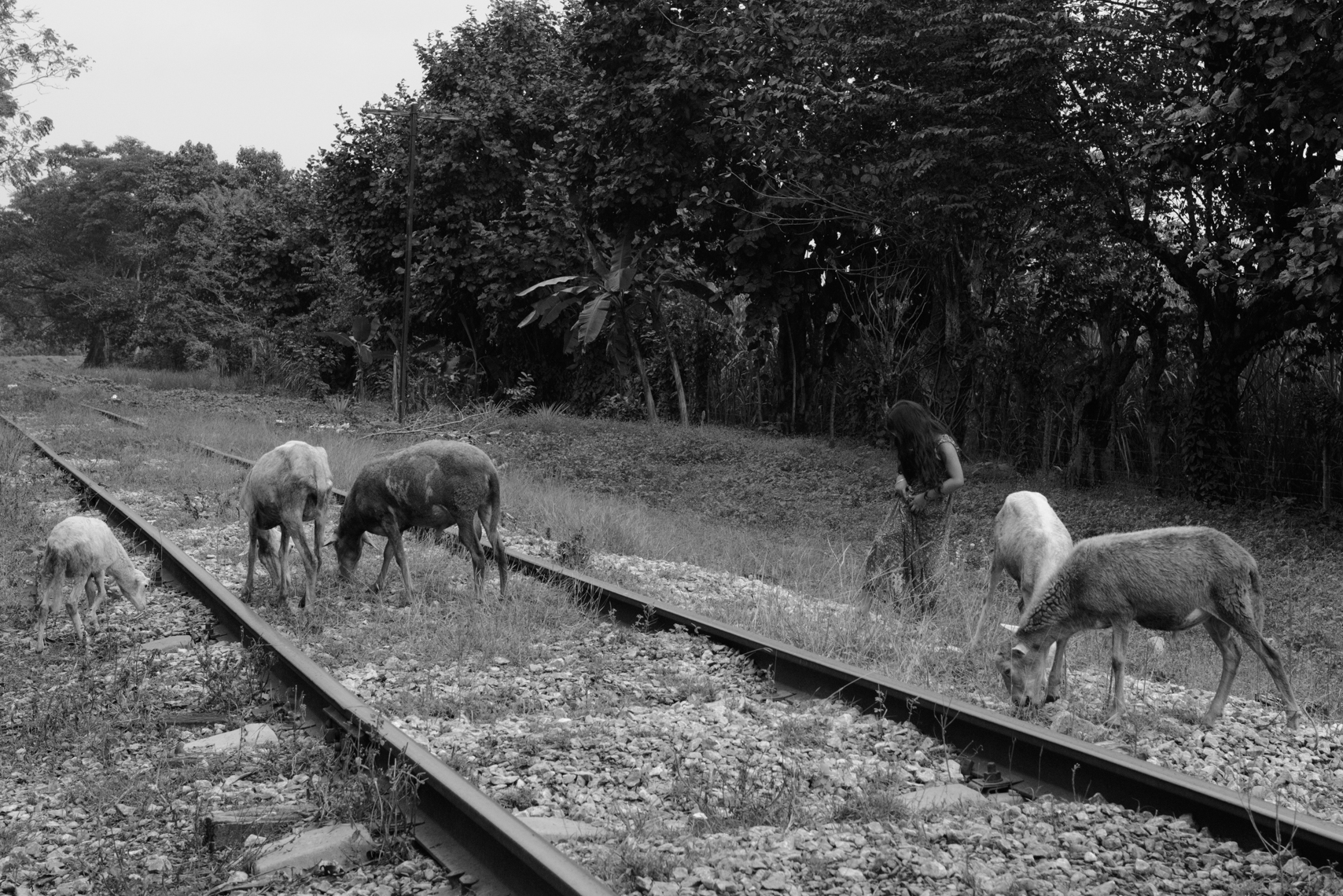 """A girl stands by a track for """"La Bestia,"""" a freight train many migrants used to ride north. The U.S.-funded Plan Frontera Sur has increased enforcement on the train, so migrants have turned instead to walking and taking buses. This is a particularly dangerous area for them, with many robberies and attacks."""