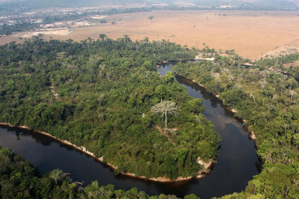 Area-cleared-by-AJ-Vilela-gang-near-Ja£-indigenous-land-1490135571
