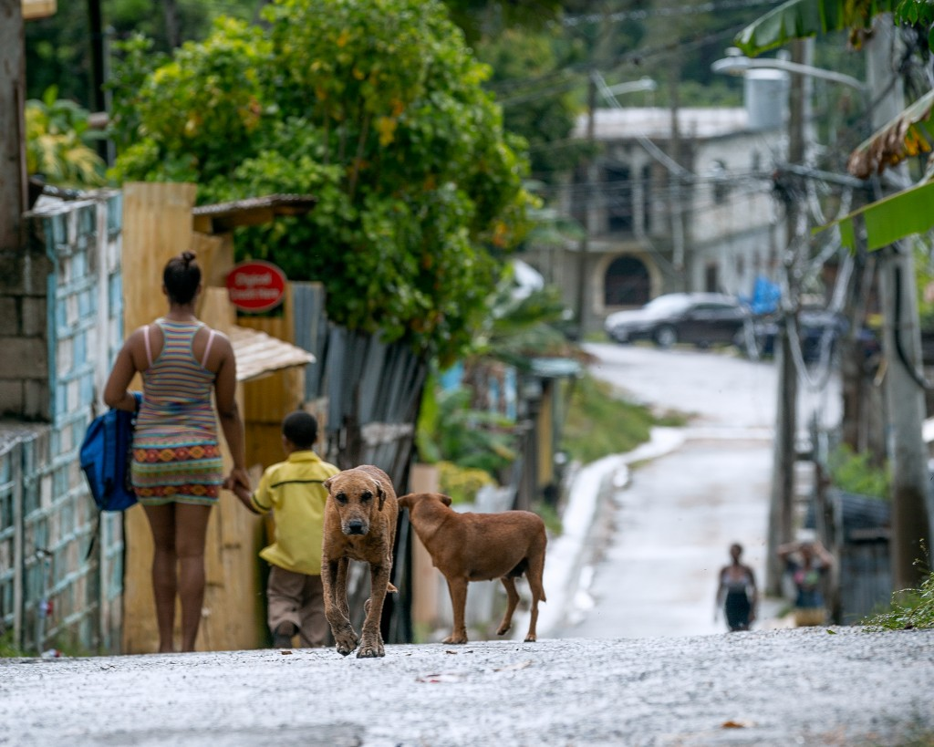 A lower-income area of the Mount Salem neighborhood of Montego Bay, photographed on May 18, 2018, which has been greatly affected by the violence and crime due to lotto scamming.