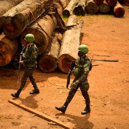 Forças Armadas recebem orçamento 10 vezes maior que Ibama para não fiscalizar Amazônia