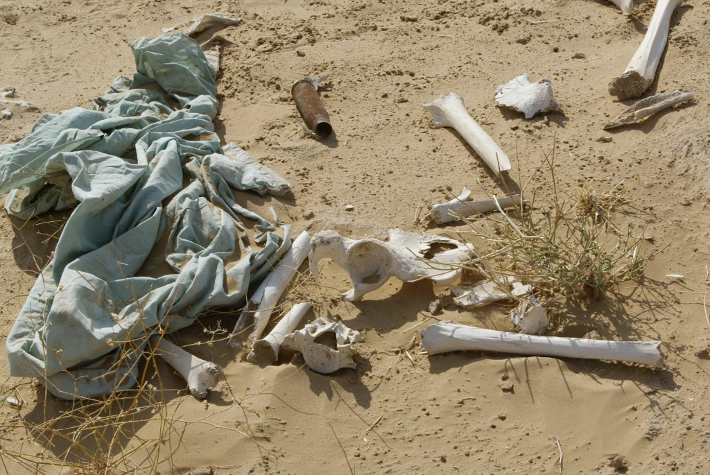 AFGHANISTAN MASS GRAVE