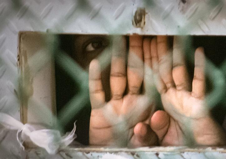 Guantanamo Trials